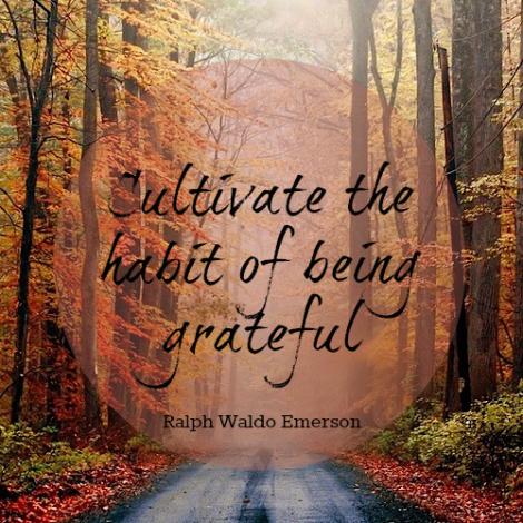 Habit Grateful