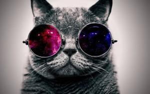 apocalyptic-sunglasses