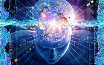 brain_f3