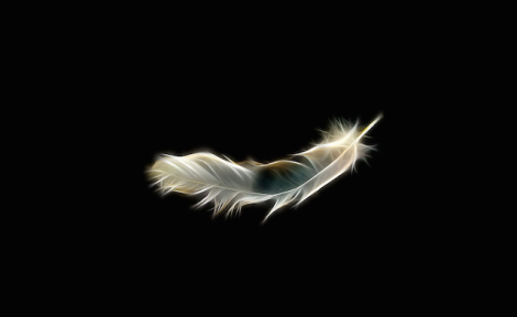 falling-feather